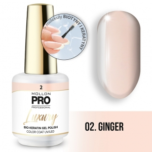Luxury Gel Polish Color Coat 02 Ginger 8ml