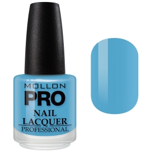 Hardening Nail Lacquer no 229 15ml