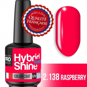Hybrid Shine System Color Coat UV/LED 2/138 Raspberry 8ml