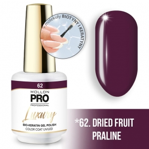 Luxury Gel Polish Color Coat 62 Dried Fruit Praline 8ml