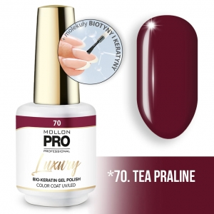 Luxury Gel Polish Color Coat 70 Tea Praline 8ml