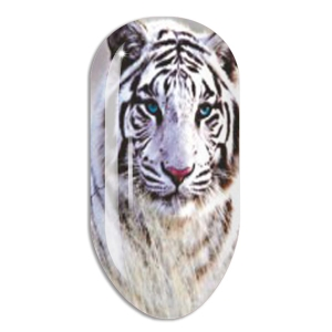 Nail Art Stickers N665