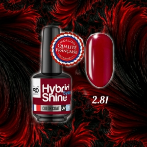 Hybrid Shine System Color Coat 2/81 Judith 8ml