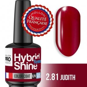 Hybrid Shine System Color Coat 2/81 Judith 8ml