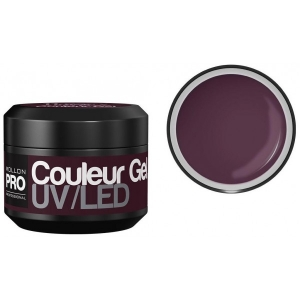 Couleur Gel UV/LED 17 Purple Orchid 5g