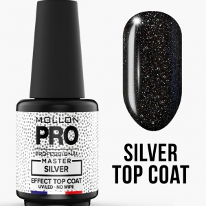Master Silver Effect Top No Wipe 10ml